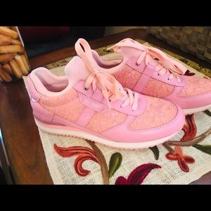 Dolce & Gabbana Limited Edition Pink Sneakers